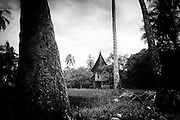 a 120-year old rumah gadang owned by Marnis, still standing tall between coconut plantation.Her house is the remaining heritage that Sumpu proud of.