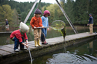 4 year-old kids use fishing nets to catch salamanders at Horning's Hideout stocked fishing lake near Hillsboro Oregon.