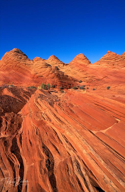 Afternoon light on marbled sandstone formations near Buckskin Gulch, Paria Canyon-Vermillion Cliffs Wilderness, Arizona