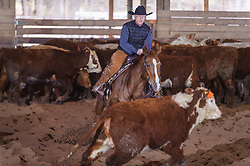 April 29 2017 - Minshall Farm Cutting 1, held at Minshall Farms, Hillsburgh Ontario. The event was put on by the Ontario Cutting Horse Association. Riding in the Open Class is Brian Kelly on The Reyl Slim Shady owned by Eric Bouchard.
