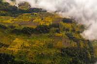 on a slope of the Acatenango volcano in Guatemala on Monday, Nov. 5, 2018.