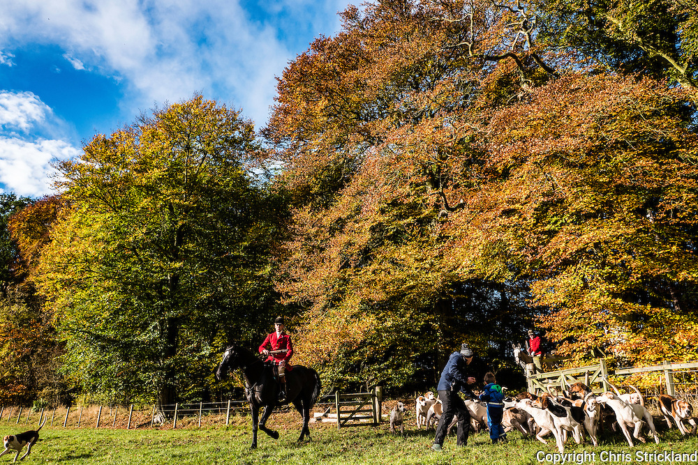 Bonchester Bridge, Hawick, Scottish Borders, UK. 29th October 2016. The Jedforest Hunt hold thier opening meet near the village of Bonchester Bridge in the Scottish Borders.