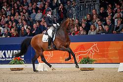 Loos Franka, NED, Invernes<br /> KWPN Stallionshow - 's Hertogenbosch 2018<br /> © Hippo Foto - Dirk Caremans<br /> 02/02/2018