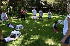 7-13-16 Zoo Camp