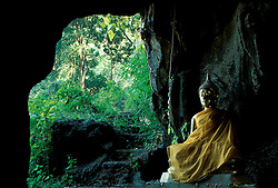 Asia, Thailand, Northern Thailand, Mae Hong Son, Golden Buddha in cave at forest wat