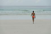 Orla & Corbisiero<br /> Tortuga Bay<br /> Santa Cruz Island<br /> Galapagos<br /> Ecuador, South America<br /> ENDEMIC