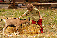 Boy, kids, pets goat, farm