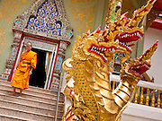 28 JUNE 2011 - CHIANG MAI, THAILAND: A monk walks past the Naga, or magical serpents that guard the temple, at Wat Phrathat Doi Saket, a large temple complex in Chiang Mai, Thailand. The temple at Doi Saket is said to have been built in the year 1112, but it has been renovated several times since then.  PHOTO BY JACK KURTZ