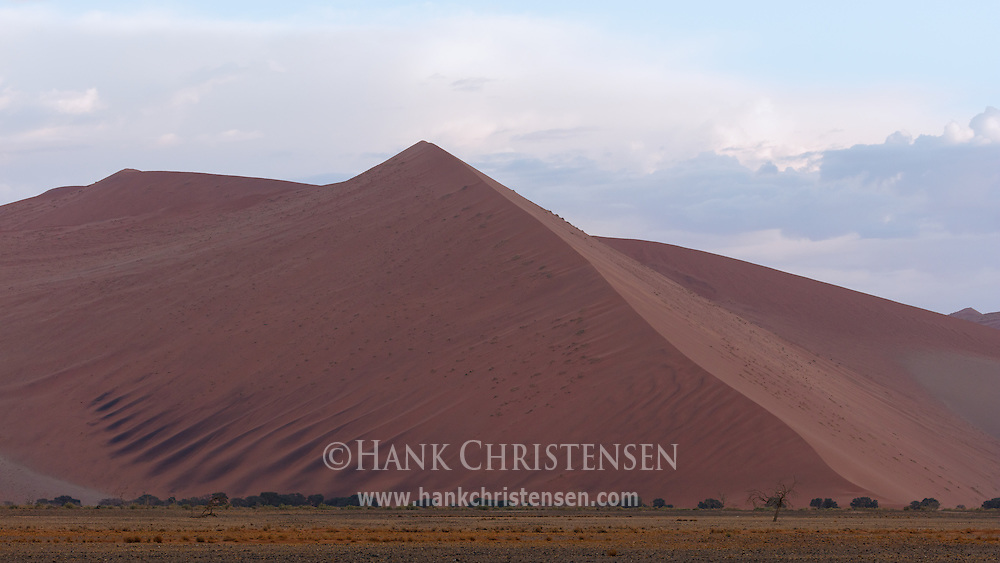 The immense sand dunes of Namib-Naukluift National Park glow in early morning light.