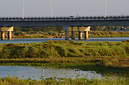 Highway passing through the protected wildlife at the Tagus Estuary.
