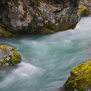 Beautiful waters of the Olympic National Forest