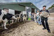 Koeien uitzwaaidag