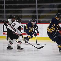 Men's Ice Hockey: Hamline University Pipers vs. University of Wisconsin, Eau Claire Blugolds
