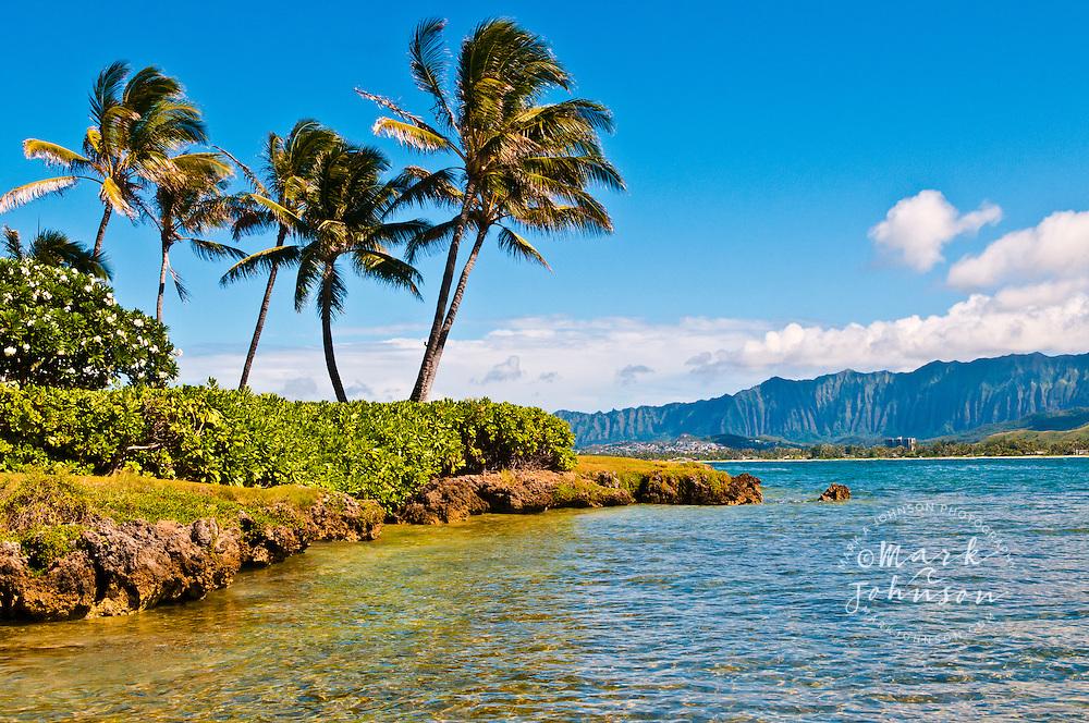 Kailua Bay, palm trees & Koolau Mountains, Oahu, Hawaii