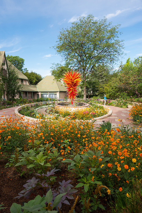 Chihuly summer morning