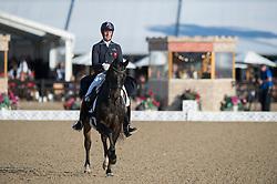 Watson Daniel, GBR, Amadeus<br /> Grand Prix Freestyle  <br /> Royal Windsor Horse Show<br /> © Hippo Foto - Jon Stroud