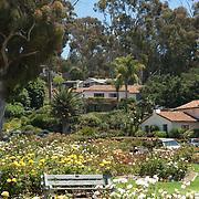 Mission Santa Barbara park. Santa Barbara, CA.