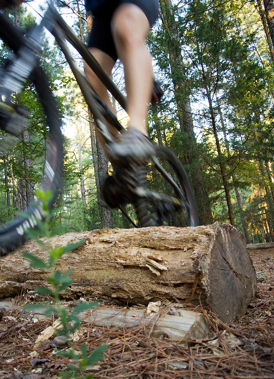A 40-year-old Caucasian man wearing a blue shirt and black bike shorts jumps from a ramp on the Seawell School Rd. mountain biking trails in Chapel Hill, NC.