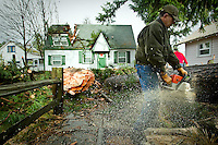 Larry Chmura cuts a large section of fallen tree in half Thursday after having it removed from the roof of a rental home he owns on Pine Avenue in Coeur d'Alene. The fell through the roof of the home Wednesday night when nobody was inside the residence and knocked out power to the neighborhood.