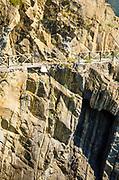 Damaged cliffside trail, Riomaggiore, Cinque Terre, Liguria, Italy