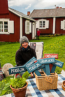 Market in Gammelstad, Sweden