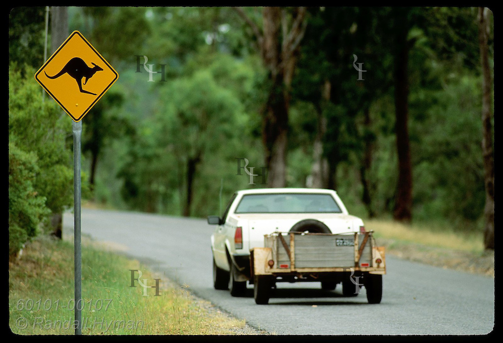 Car known as a 'ute' tows trailer past kangaroo-crossing sign on highway outside city of Brisbane Australia