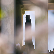 People gather around statue of United States President Thomas Jefferson at the Jefferson Memorial in Washington DC, USA during the National Cherry Blossom Festival<br />