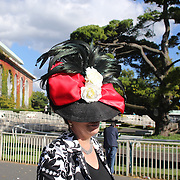A lady wearing a decretive hat at Belmont Park during the Jockey Club Gold Cup Day, Belmont Park, New York. USA. 28th September 2013. Photo Tim Clayton