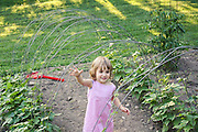 My granddaughter, Shelby (2 years old at the time) walking through the bean tunnel. By mid-summer the vines will have covered the wires and be full of beans.