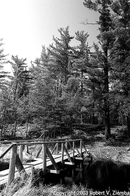 A black and white image of a foot bridge crossing a stream on the trail to the Gulf Unique Area