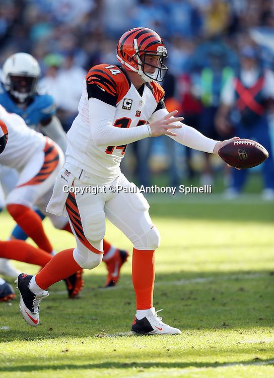 Cincinnati Bengals quarterback Andy Dalton (14) hands off the ball on a running play during the NFL week 13 football game against the San Diego Chargers on Sunday, Dec. 1, 2013 in San Diego. The Bengals won the game 17-10. ©Paul Anthony Spinelli