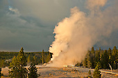 Yellowstone National Park  - Summer