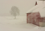 Snow blows off the roof of a barn along Knollwood Road in Ozaukee County Tuesday morning. jeffrey phelps