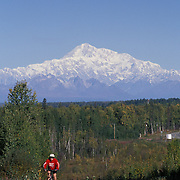 Bicyclist Crests Hill On Talkeetna Spur Road With Mount McKinley In Distance Near Talkeetna, Alaska;USA