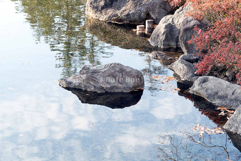 rock with nature reflection in the water of a pond in the Japanese Showa Kinen park garden Tokyo