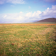 Isle of Harris, Western Isles, Outer Hebrides, Scotland.  Machair grassland,