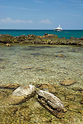Natural water pool in Pacheca island shore. Las Perlas archipelago, Panama province, Panama, Central America.