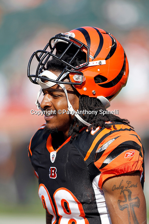 Cincinnati Bengals running back Bernard Scott (28) looks on during the NFL week 8 football game against the Miami Dolphins on Sunday, October 31, 2010 in Cincinnati, Ohio. The Dolphins won the game 22-14. (©Paul Anthony Spinelli)