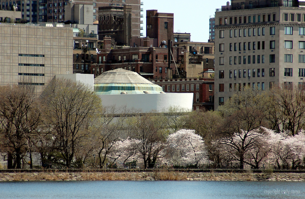 Guggenheim Museum and Jackie Kennedy Onassis Reservoir