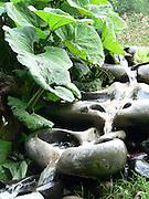 Vattentrappa i Järna