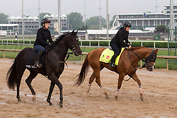 Derby 142 hopeful Whitmore with Laura Moquett up were on the track for training, Sunday, May 01, 2016 at Churchill Downs in Louisville.