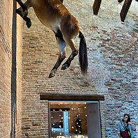 """VENICE, ITALY April 8th: An installation of Maurizio Cattelan """"Untitled"""" at the pening of the Exhibition In Praise of Doubt at Punta della Dogana  organised by the Francois Pinault Foundation ...HOW TO BUY THIS PICTURE: please contact us via e-mail at sales@xianpix.com or call our offices in Milan at (+39) 02 400 47313 or London   +44 (0)207 1939846 for prices and terms of copyright."""