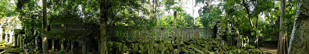 Ta Prohm Jungle Temple (Angkor Complex)