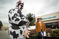 Marleen Schoenfeld stands outside the Silver Lake Mall in her cow costume Wednesday with her daughter Samantha Schoenfeld, 11, as they distribute fliers for the upcoming Wishing Star Foundation fundraiser. The organization will sent telegrams along with goats to people who have to pay to have the farm animals taken away.