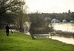 © Licensed to London News Pictures. 22/12/2019. Thames Ditton, UK. A man walks his dog along the bank of The River Thames which has burst it's banks at Thames Ditton, Surrey. Further weather warnings are in place following flooding and high winds in parts of the UK . Photo credit: Ben Cawthra/LNP