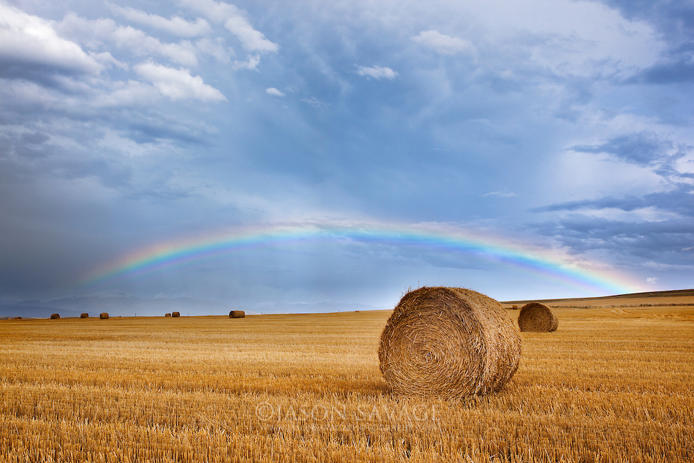A passing storm delivers a perfect rainbow over haybales, Montana.