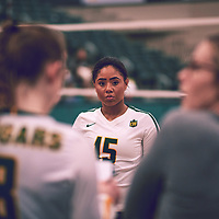 2nd year libero, Sierra Parris-Kruger (15) of the Regina Cougars during the Women's Volleyball home game on Thu Nov 15 at Centre for Kinesiology, Health & Sport. Credit: Arthur Ward/Arthur Images
