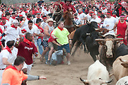 """18 bulls were released and ran around a quarter-mile track into crowds of people during Georgia's inaugural """"Running of the Bulls."""" Participants paid $75 for the experience."""