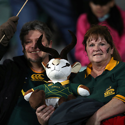Springboks fans during the Rugby Championship match between the New Zealand All Blacks and South Africa Springboks at QBE Stadium in Albany, Auckland, New Zealand on Saturday, 16 September 2017. Photo: Shane Wenzlick / lintottphoto.co.nz