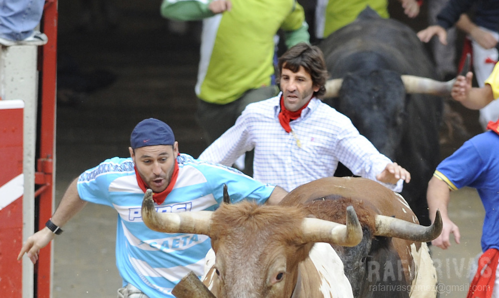 Spanish matador Juan Jose Padilla (C) runs with the Miura fighting bulls that he will fight in the afternoon's corrida, during the seventh encierro of the San Fermin festivities, on July 13, 2008, in Pamplona, north of Spain.